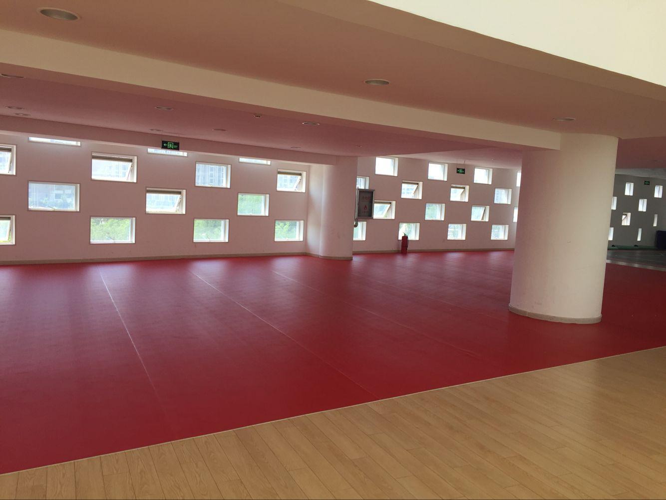 乒乓球地胶,乒乓球训练室地胶