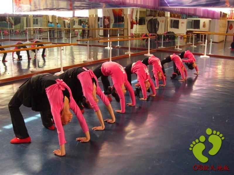 定西市舞蹈家协会艺术培训中心舞蹈地胶